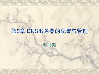 第 8 章  DNS 服务器的配置与管理