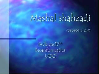 Mashal shahzadi (08030614-019)