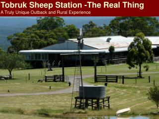 Tobruk Sheep Station -The Real Thing  A Truly Unique Outback and Rural Experience