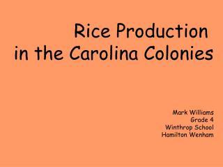Rice Production  in the Carolina Colonies Mark Williams Grade 4 Winthrop School Hamilton Wenham