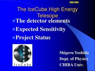 The IceCube High Energy Telesope