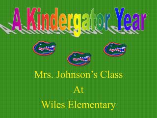 Mrs. Johnson's Class At  Wiles Elementary