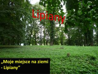 Lipiany