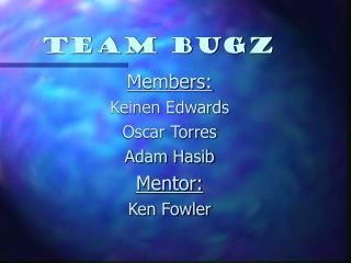 Team Bugz