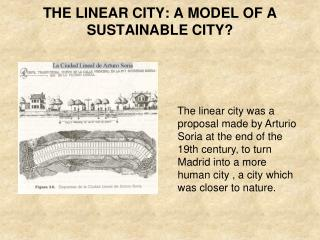 THE LINEAR CITY: A MODEL OF A SUSTAINABLE CITY?