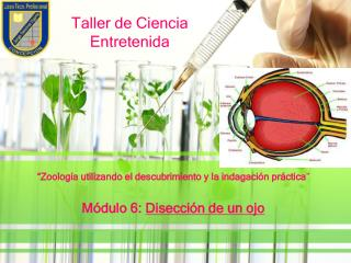 Taller de Ciencia Entretenida