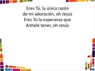 Eres Tú, la única razón de mi adoración, oh Jesús Eres Tú la esperanza que  Anhelé tener, oh Jesús
