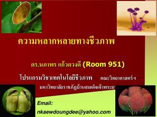 ดร.นภาพร แก้วดวงดี (Room 951)