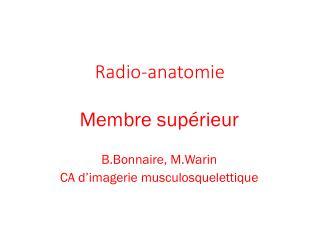Radio-anatomie