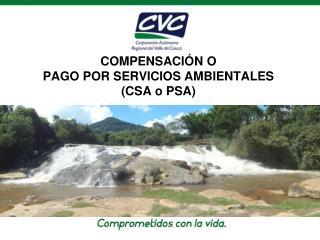 COMPENSACIÓN O PAGO POR SERVICIOS AMBIENTALES  (CSA o PSA)
