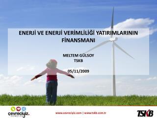 ENERJİ VE ENERJİ VERİMLİLİĞİ YATIRIMLARININ FİNANSMANI MELTEM GÜLSOY TSKB 05/11/2009