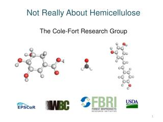 Not Really About Hemicellulose The Cole-Fort Research Group