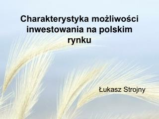 Charakterystyka możliwości inwestowania na polskim rynku