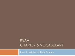 BSAA  Chapter 5 Vocabulary