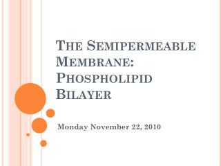 The  Semipermeable  Membrane: Phospholipid Bilayer