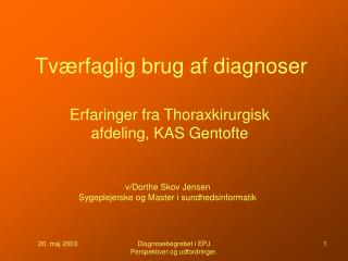 Tværfaglig brug af diagnoser