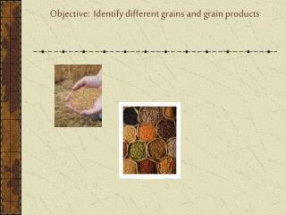 Objective:  Identify different grains and grain products