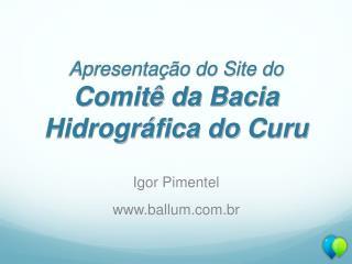 Apresentação do Site do Comitê da Bacia Hidrográfica do  Curu