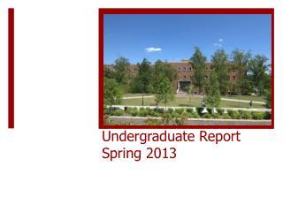 Undergraduate Report  Spring 2013