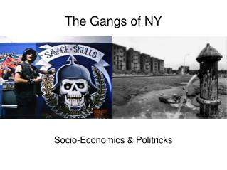 The Gangs of NY