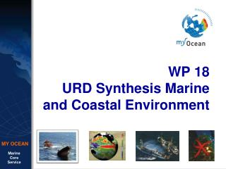 WP 18 URD Synthesis Marine and Coastal Environment