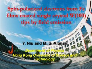 Spin-polarized electrons from Fe films coated single crystal W(100) tips by field emission