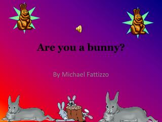 Are you a bunny?