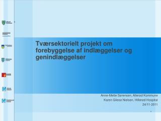 Tv�rsektorielt projekt om forebyggelse af indl�ggelser og genindl�ggelser