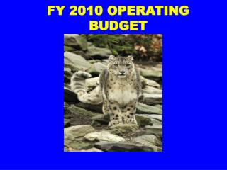 FY 2010 OPERATING BUDGET