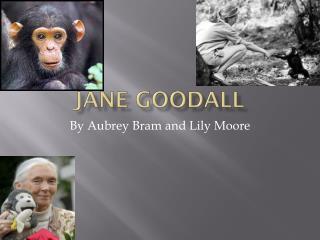 J ane  Goodall