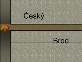 Český