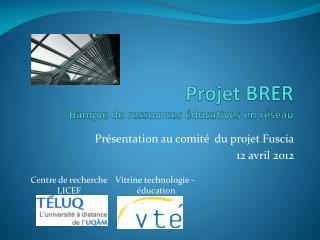 Projet  BRER Banque de ressources éducatives en réseau