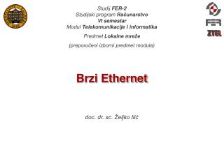 Brzi Ethernet