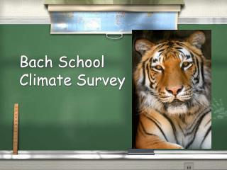 Bach School Climate Survey