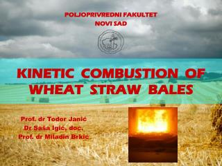 KINETIC   COMBUSTION  OF WHEAT  STRAW   BALES