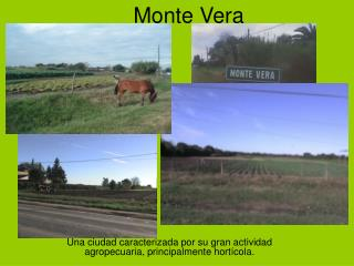 Monte Vera