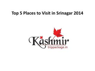 top 5 places to visit in srinagar