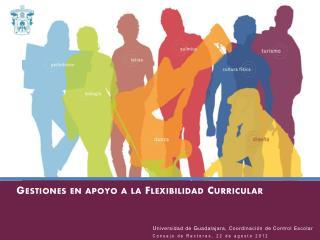 Gestiones en apoyo a la Flexibilidad Curricular