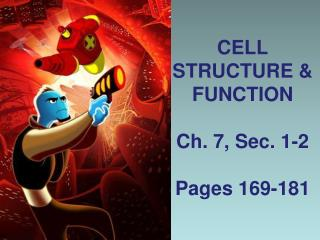 CELL STRUCTURE & FUNCTION Ch. 7, Sec. 1-2 Pages 169-181