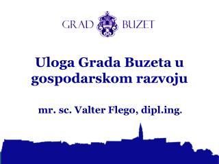 Uloga Grada Buzeta u gospodarskom razvoju
