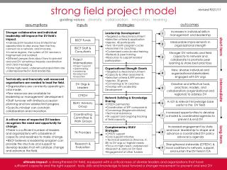 strong field project model