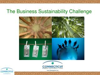 The Business Sustainability Challenge