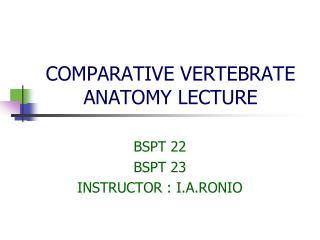 COMPARATIVE VERTEBRATE ANATOMY LECTURE