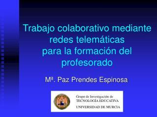 Trabajo colaborativo mediante redes telemáticas para la formación del profesorado