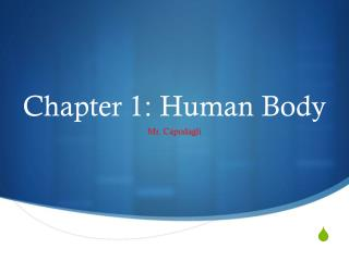 Chapter 1: Human Body