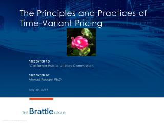 The Principles and Practices of Time-Variant Pricing