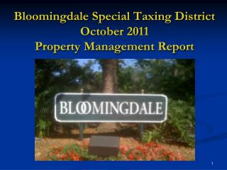 Bloomingdale Special Taxing District October 2011 Property Management Report