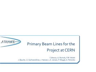 Primary Beam Lines for the   Project at CERN