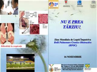 Ziua Mondiala de Luptă Împotriva Bolii Pulmonare Cronice Obstructive (BPOC) 16 NOIEMBRIE