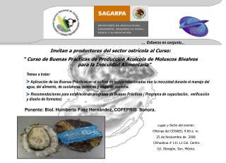 Invitan a productores del sector ostrícola al Curso:
